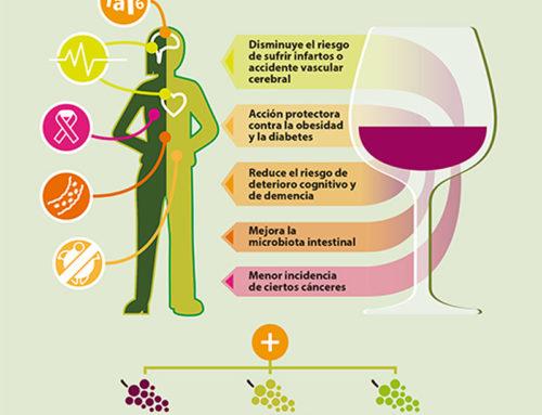 Los diversos beneficios sobre la salud derivados del consumo de vino